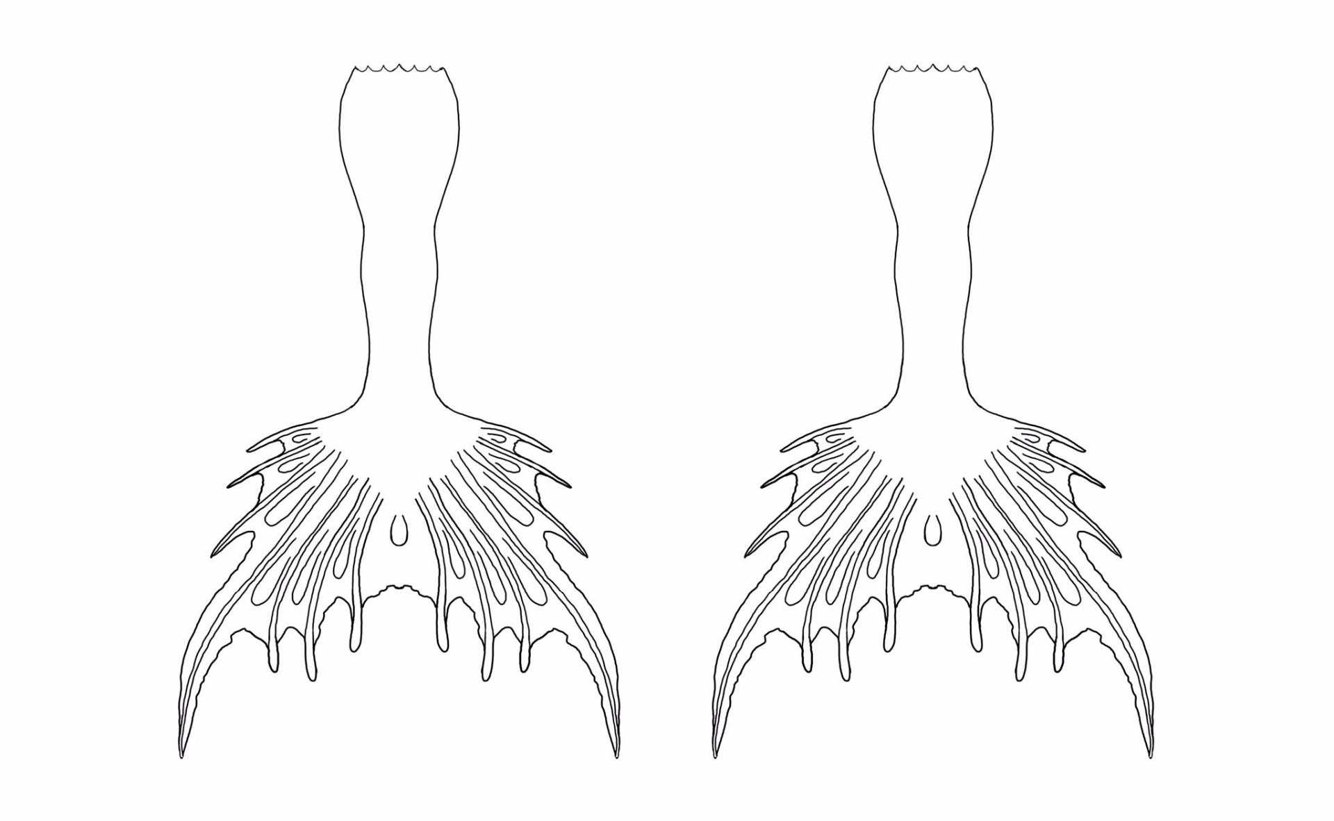 Mermaid Tail Coloring Page